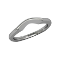 Destiny - Wedding Band - Platinum 1